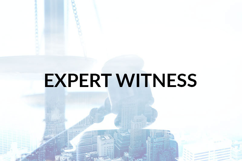 EXPERT-WITNESS-FADE-IN-min